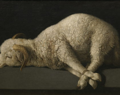 """Behold!"" The Lamb of God! (John 1:29-34)"