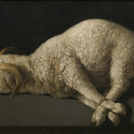"""Behold!"" The Lamb of God! (John 1:29-34)"