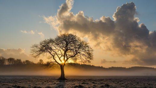 Prayer & The Sovereignty of God - RP12