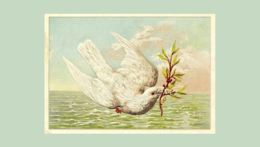 Noah's Boat, Part 4: God's Doves