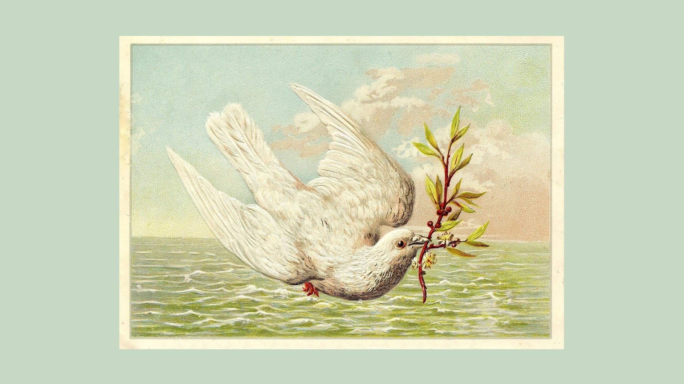 Noah's Boat, Part 4: God's Doves