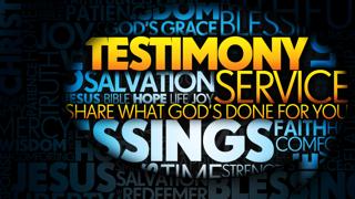 Scott Spear Testimony
